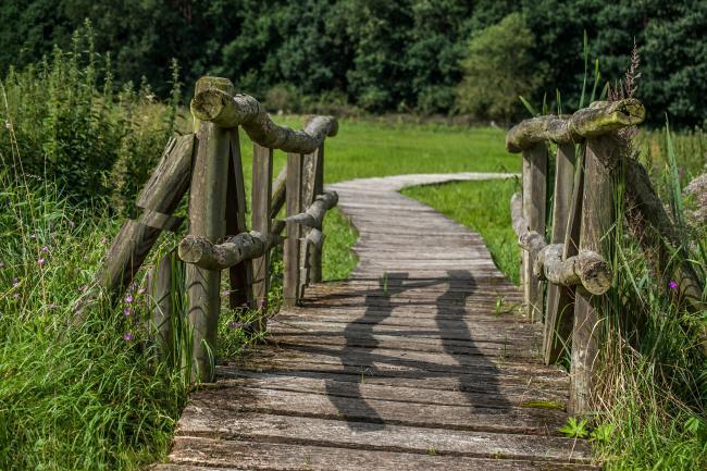Brücke @ hmauck_ cc0 gemeinfrei pixabay